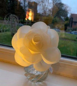 Flower Diffuser